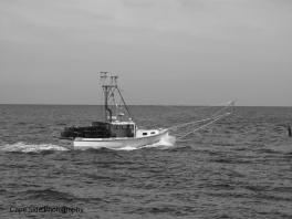 """""""Fishing in the Ocean"""""""