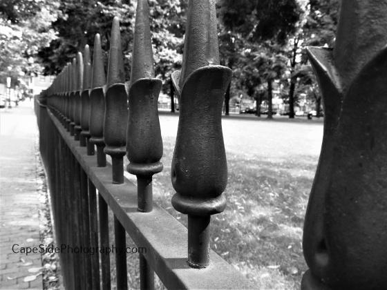 """""""Iron Fence"""""""