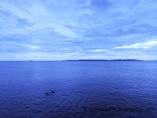 """""""Beautiful Blue Day"""""""