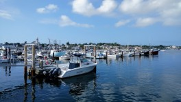 """Boats in the PTown Harbor"""