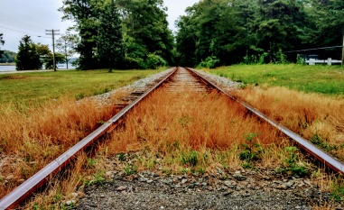 """Railroad on the Cape"""